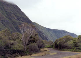 Road from Kalawao Cove toward Kalaupapa