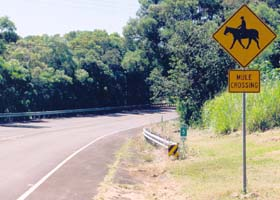 Mule crossing sign