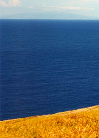Blue ocean contrasts with dry golden grass, with Mauna Kea off in the distance
