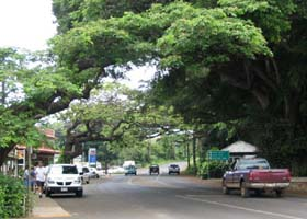 County route 520, through Koloa town